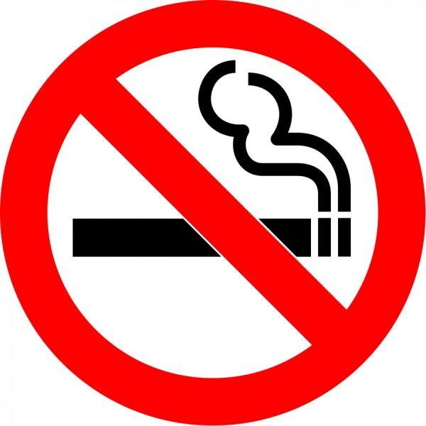 """""""NO SMOKING"""" STICKER"""